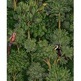 Intrade Amazonia Botanist Green tapet