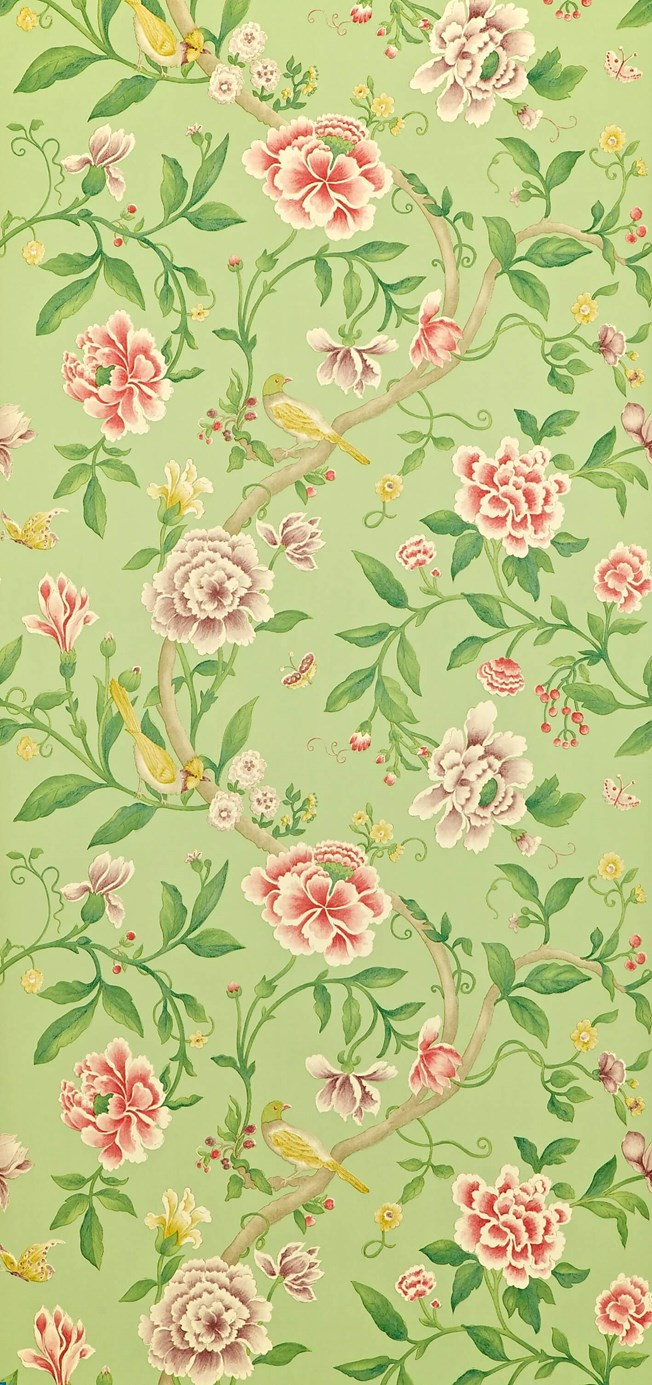 Sanderson Porcelain Garden Rose/Fennel tapet