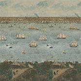 Designers Guild John Derian Seaport Ocean