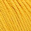0208 Canary