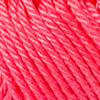 0256 Raspberry