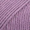 23 Lavendel