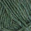 1706 Lyme Grass