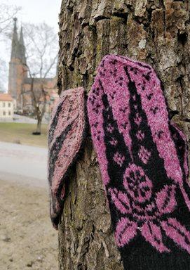 Uppsala-Vanten