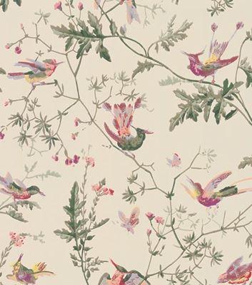 Tapet med klassiska fåglar - Hummingbirds - Från Cole & Son