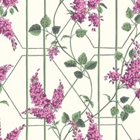 Cole & Son Wisteria