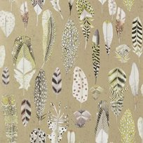 Designers Guild Quill Gold Tapet