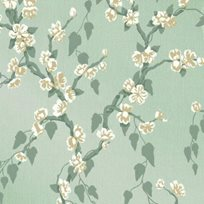 Little Greene Sakura