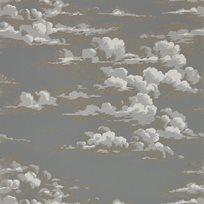 Sanderson Silvi Clouds - Taupe Grey Tapet