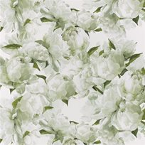 Designers Guild Peonia Chartreuse Tapet