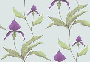 Cole & Son Orchide Tapet