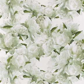 Designers Guild Peonia Chartreuse