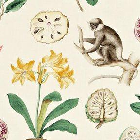 Sanderson Capuchins Tyg