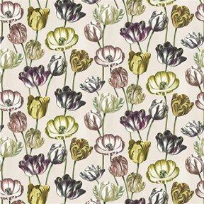 John Derian Variegated Tulips Buttermilk