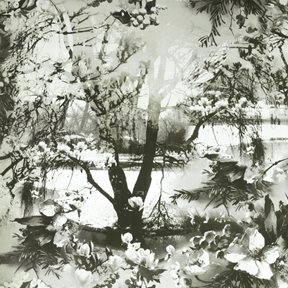 Jean Paul Gaultier Brume