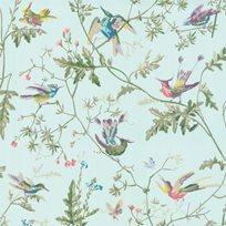 Cole & Son Hummingbirds Tapet