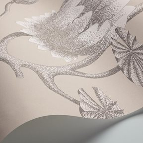 Cole & Son Summer Lily Tapet