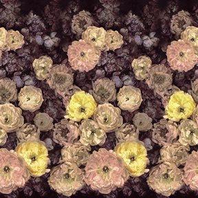 Designers Guild Le Poeme De Fleurs Midnight