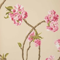 Nina Campbell Orchard Blossom Tapet