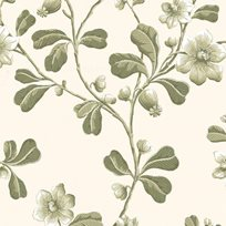 Little Greene Broadwick St.