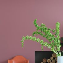 Farrow & Ball Crimson Red