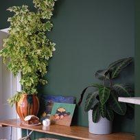 Farrow & Ball Duck Green Färg