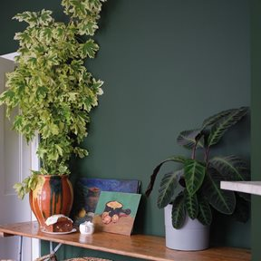 Farrow & Ball Duck Green