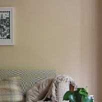 Farrow & Ball Orange Coloured White