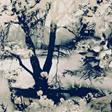 Jean Paul Gaultier Vagabond Tyg