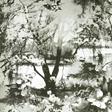 Jean Paul Gaultier Brume Tapet