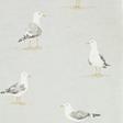 Sanderson Shore Birds