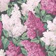 Cole & Son Lilac Tapet