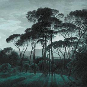 Au fil des Couleurs Pine Trees