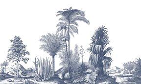 Au fil des Couleurs Aloes