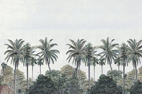Au fil des Couleurs Palm Grove