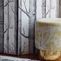 Cole & Son Cow Parsley, White & Chartreuse Tyg