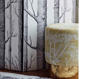 Cole & Son Cow Parsley, White & Chartreuse