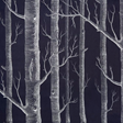 Cole & Son Woods, White on Charcoal