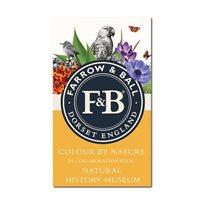 Farrow & Ball Färgkarta Farrow & Ball Färg