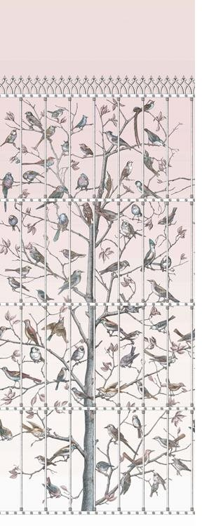 Cole & Son Uccelli