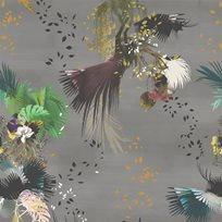 Christian Lacroix Oiseau Fleur Graphite Tapet