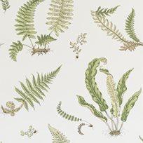 Baker Ferns, Leaf Tapet