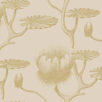 Cole & Son Lily Tapet