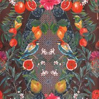 Matthew Williamson Talavera