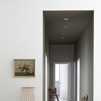 Little Greene Wood Ash 229