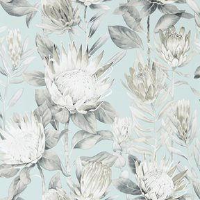 Sanderson King Protea