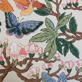 Baker Magnolia, Original