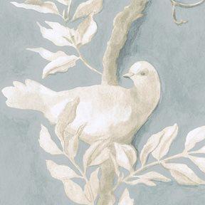 Lewis & Wood Doves, Rock Dove