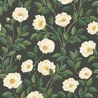 Cole & Son Hampton Roses Tapet