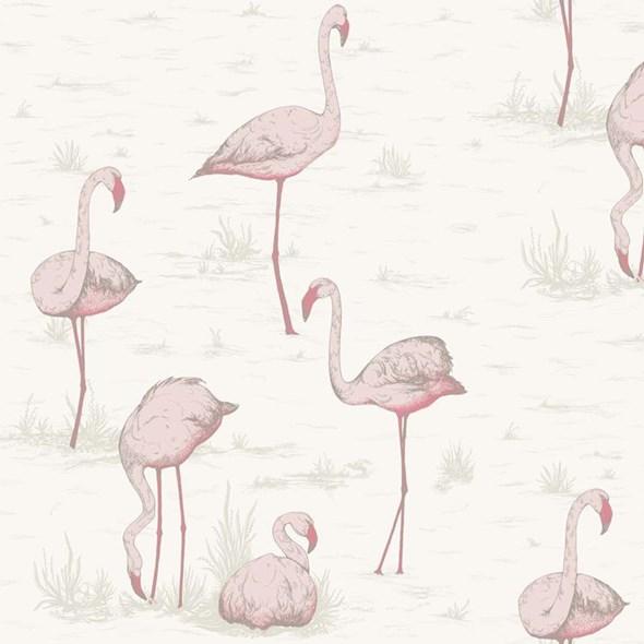 Cole & Son Flamingos Tapet